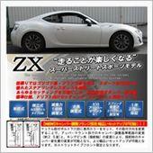 RACING GEAR ZX DAMPERの画像