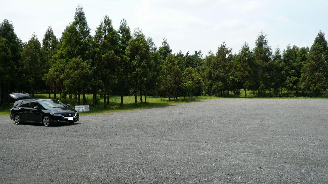 神奈川県 泉の森ふれあいキャンプ場 の写真g6097