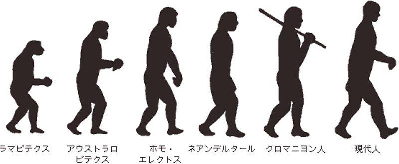人類の進化の歴史や過程・未来・残された謎|二足 …