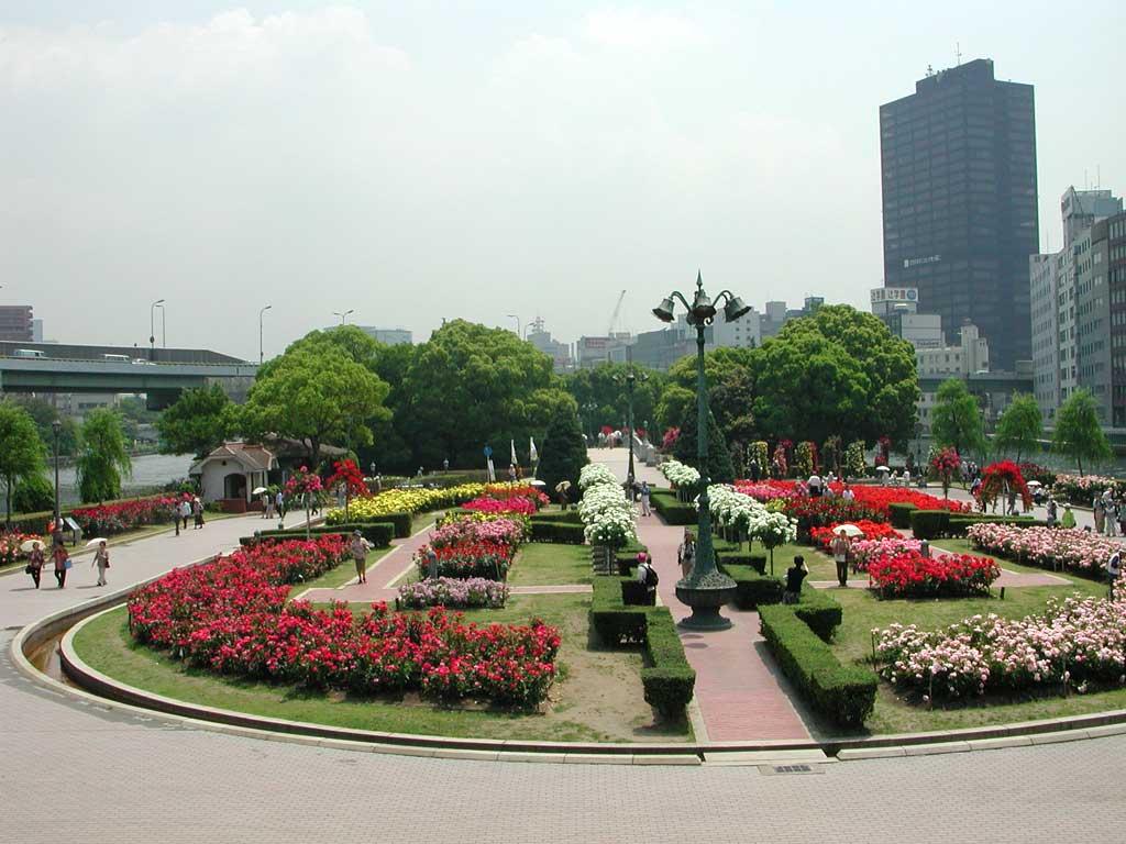 このおすすめスポットをクリップする 大阪の中心街にある中ノ島公園には多くバラは咲いています。 水