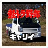 高木マコトさんの愛車:スズキ キャリイトラック