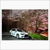 ユメタマさんの愛車:三菱 ギャランフォルティススポーツバック