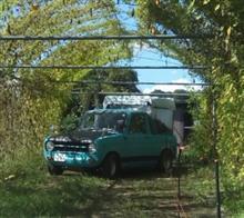 loubonさんの愛車:マツダ ポータートラック