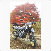 KAZU036→966さんの愛車:ホンダ CRF250M