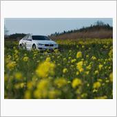 ととちさんの愛車:BMW 3シリーズ セダン