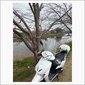 Kawasaki midoriさんの愛車:ホンダ リードEX
