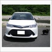 めがねおやじさんの愛車:トヨタ カローラアクシオ