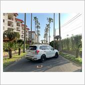 9876543210さんの愛車:スバル フォレスター